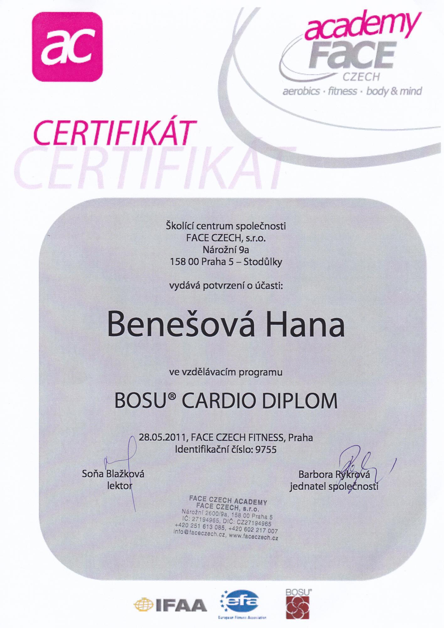 Bosu_Cardio2