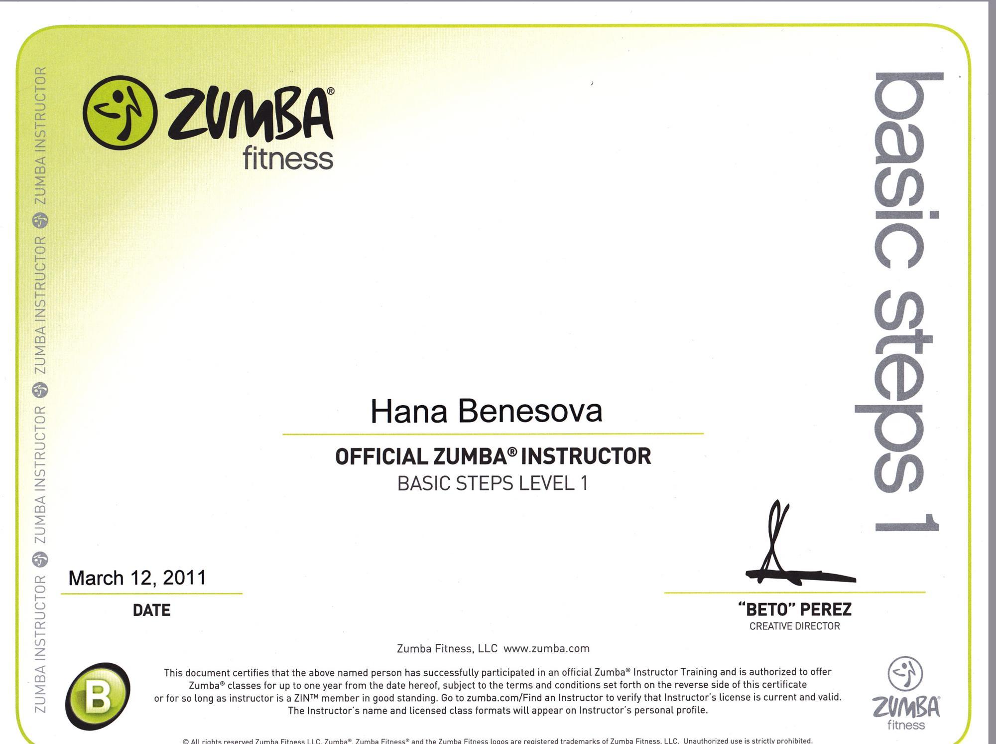 Zumba_level_1